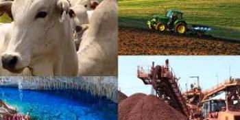 Economia de Mato Grosso começa a apresentar boa evolução nas vendas em alguns setores