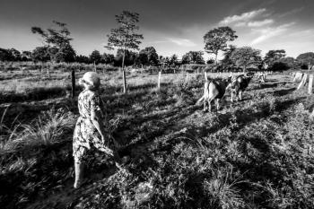 Mãe e filha fazem da agricultura familiar oportunidade de ascensão