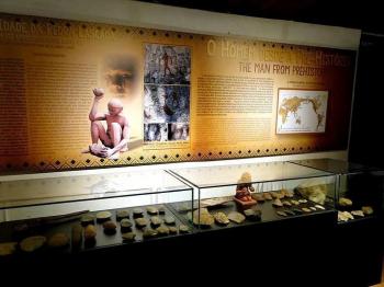 Museu de História Natural Casa Dom Aquino dobrou número de visitantes em 2019