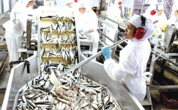 Brasil retoma exportação de pescado e seus produtos para Israel