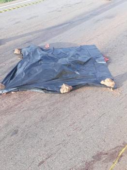 Mulher é atropelada e morre esmagada na BR 163 próximo a Rosário Oeste