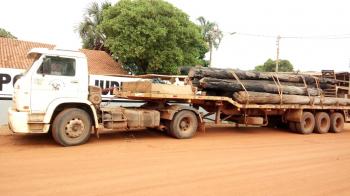 Toras de madeira irregular são apreendidas pela Polícia Civil com caminhoneiro em São Félix do Araguaia