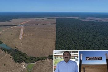 Quatro dos 10 maiores desmatadores da Amazônia são produtores de MT