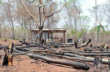 Governo Bolsonaro não cumpre decisão e cerca de 100 famílias são ameaçadas em MT