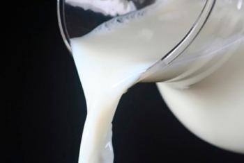 Lácteos sobem no mercado atacadista