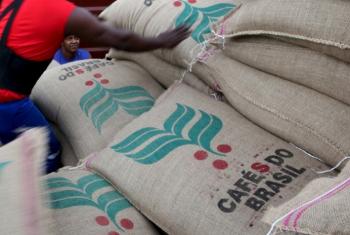 Exportação dos Cafés do Brasil atinge 46 milhões de sacas em 12 meses