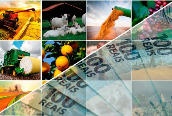 Crédito Rural abre safra com recorde