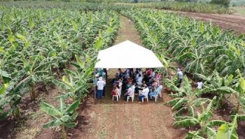 Empaer atende mais de 47 mil agricultores familiares em 2019