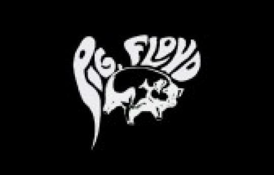 Pig Floyd o Show - Tributo Pink Floyd