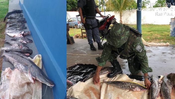PM apreende 80 quilos de pescado irregular