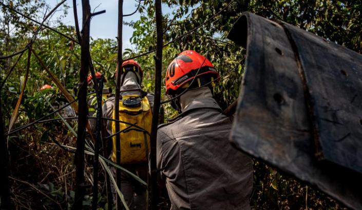 Mato Grosso reduz 85,8% focos de calor no Pantanal nos primeiros cinco meses