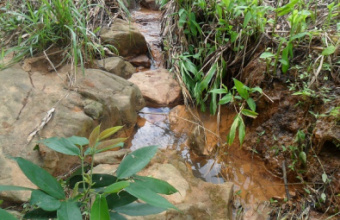 MPE quer desenterrar 4 nascentes em bairro de Cuiabá